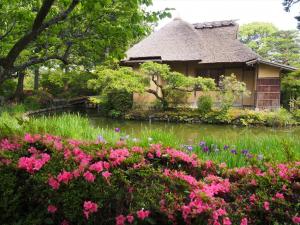 梅宫大社风景图2