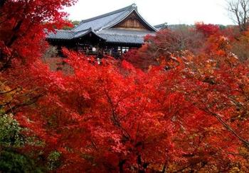 s_東福寺2